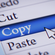 edit menu with the cursor highlighting the copy option